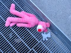 left behind (@rild) Tags: pink toy toys behind left panther leker leke gjenglemt igjen rild glemt