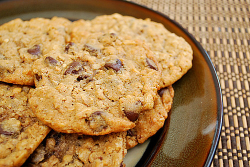 Peanut Butter Oatmeal Chocolate Chipsters