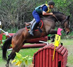 ST Jair e Herdeiro do Rinco (schlupcav) Tags: horse nikon prueba cavalo xcountry cce 80200 d300 eventing
