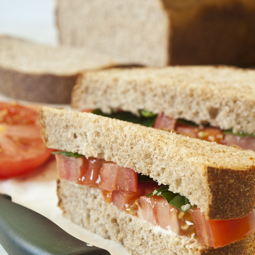 Fresh tomato sandwiches on whole wheat square