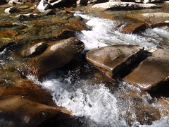 rushing stream (1)