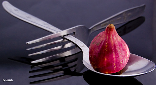 Red Onion Refined_small_2