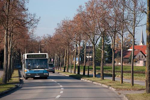 Ländlich wirkt's an der Bezirksgrenze von Feldmoching: Wagen 1059 vom Watzinger fährt durch die Lerchenauer Straße.