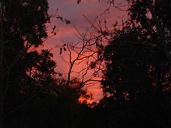 Undarra Sun Set 2