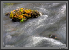 Island in the Stream (KayCpics) Tags: water river island searchthebest florida hillsboroughriverstatepark supershot anawesomeshot kaycpics
