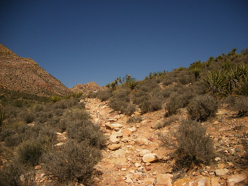 Trail out of Pine Creek Canyon