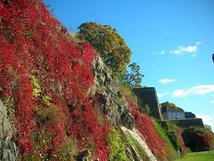 Fall at Akershus Fortress, Oslo #2