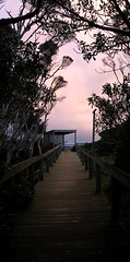Porch at sunset, Swan Lake Trail, Philip Island - by wit*chazel
