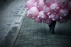 (.) (.) (theshanghaieye) Tags: china street urban man balloons walking pig interestingness asia shanghai pavement many walk cigarette empty balloon explore butts guangdong pigs   shanghaiist damp piggies  middlekingdom hintmagazineaugust2007issue