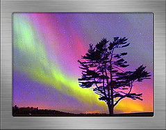 001 (dhenry_s) Tags: aurora boreal