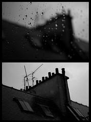 (Shemer) Tags: roof bw paris rain focus diptych dof nb