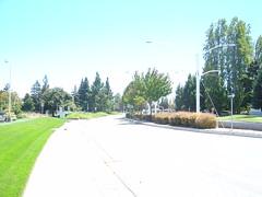 Sidewalk along G on Java towards bus stop (liliacarol) Tags: sunnyvale pedestrian conditions