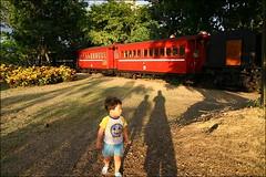 阿里山森林鐵路28