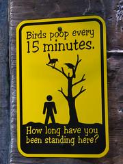 Poop Warning! (Harpo42) Tags: tree bird sign warning aquarium funny camden nj poop jersey adventureaquarium