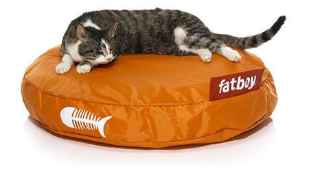 Catbag by Fatboy