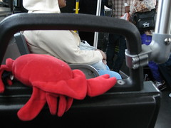 Royal Ontario Museum (chicgeekuk) Tags: red toronto ontario laura animal toy crab plush claw abroad stuffedanimal seafood claude crabs crustacean rom claws royalontariomuseum kishimoto travellingtoys travellingtoy laurakishimoto laurakishimotoca claudeabroad