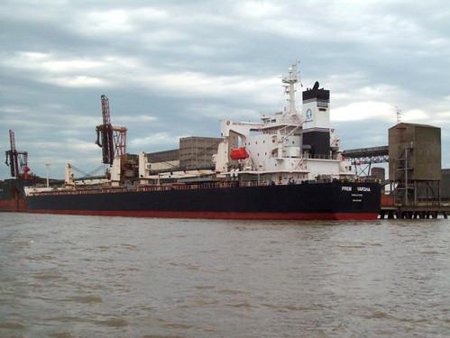 Navio Prem Varsha embarcou 66.935 toneladas de soja. Crédito: Divulgação, Termasa