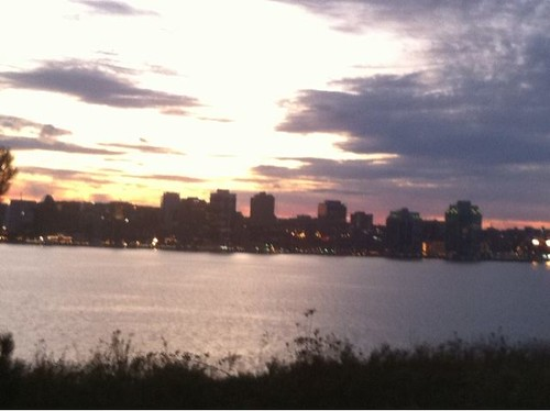 The Halifax skyline.