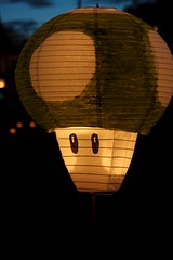 (Graham Ballantyne) Tags: canada vancouver bc illuminares lantern lanternfestival eastvancouver troutlakepark publicdreams canoneos30d canonefs1785mmf456isusm illuminares2007