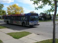 Edmonton public transit bus (jimbob_malone) Tags: edmonton alberta 2007