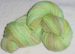 Bloom 2-ply