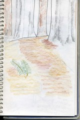 nature journal unfinished entry