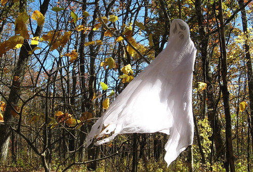 Ghost in the trees