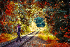 The COLORFUL LYRICS (Shabbir Ferdous) Tags: railroad red man green nature colors work colours photographer shot labor rail line explore frontpage bangladesh bangladeshi canonef70200mm28lisusm shabbirferdous canoneos1dmarkiv wwwshabbirferdouscom shabbirferdouscom