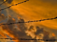No Fence To Hold It (benrobertsabq) Tags: blue sunset red sky newmexico clouds fence grey evening barbedwire nm barbwire manualfocus bobwire mywinners stillgettingusedtothe35mmbutithaspromise unmflickr