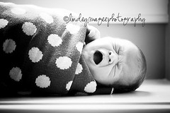 a polka dot blankie & a yawn (lindeymagee) Tags: baby window girl photography girly yawn polka dot sleepy newborn backlit bundle swaddle lindeymagee sweetbabya babyroot
