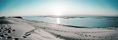 Dune du Pyla (nicolas TOISIER) Tags: sunset dune sable du paysage pyla ocan toisier nicolastoisier