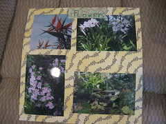 Flowers page