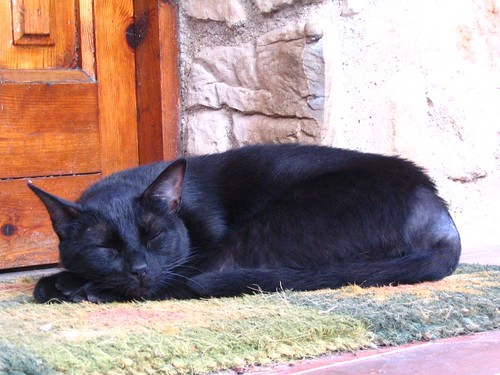 La guardiana de casa