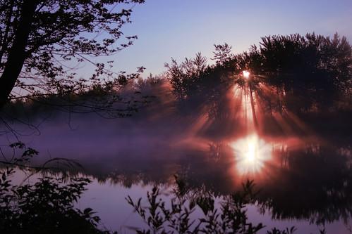 Sunpoke Sunrise