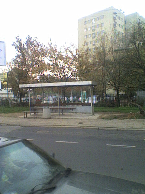 Whoa! Our bus stop got a bus shelter!