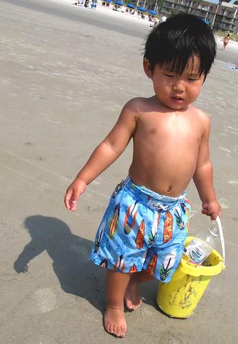 beach hilton head 15