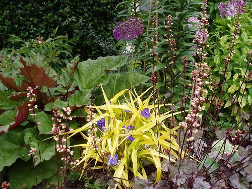 May Perennial Combo 1