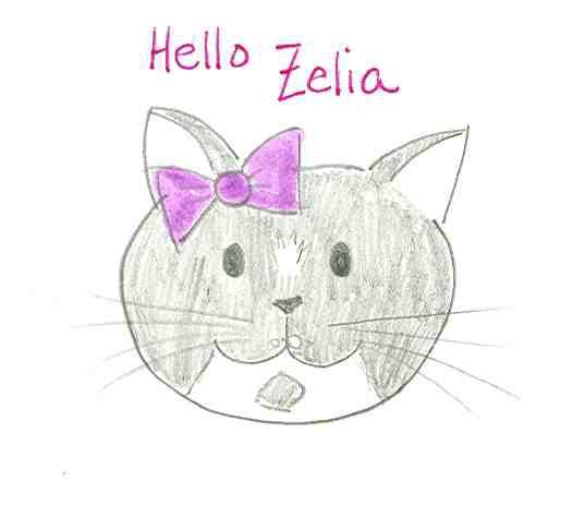 HelloZelia