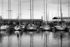 standby (mike.irwin) Tags: blackandwhite bw white lake black water sailboat reflections boats nikon texas 1870mm lewisville supershot d80 nikonstunninggallery wwwmikeirwinartcom