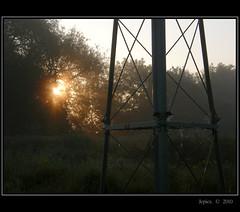 Straight Lines (Picture post.) Tags: morning trees light summer sunlight mist green nature silhouette sunrise landscape morninglight framework sunrays paysage arbre goldenhour brume morningsun matin otw summermorning