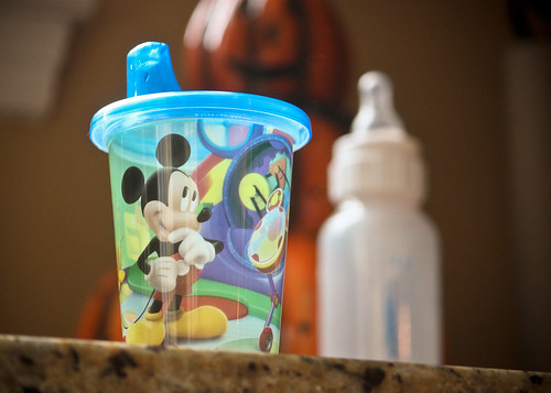 mickeycup-1
