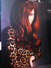 Da feira: gamei nesse cabelo - a cor, o penteado, a textura... Mto rico!