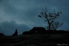 Morning Blues - by HappyHorizons