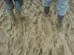 Glasto Mud (Chris Mou) Tags: glastonbury email glastonburyfestival glastonbury2007 glastonburyfestival2007