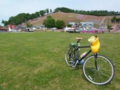 Shiba-zakura park