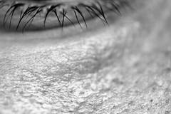 Dove approdare sempre (FotoRita [Allstar maniac]) Tags: life italy rome roma macro eye colors digital canon skin myfavourites canoneos350d eos350d occhio pelle byfotorita 123bw doveapprodaresempre cigliacomefuniacuiaggrapparsi