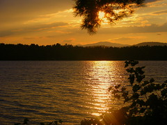 Golden Sunset on Silver Lake (brunosmi) Tags: lake newhampshire sunsets silverlake naturesfinest supershot superbmasterpiece diamondclassphotographer flickrdiamond