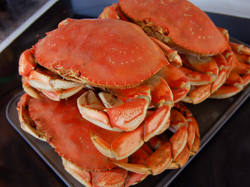 Find Dungeness Crab at Port Angeles Dungeness Crab Festival