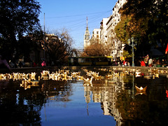 Reflejos de Mendoza / Reflections of Mendoza (Pankcho) Tags: street plaza city building water fountain argentina reflections paper boats calle agua south edificio fuente ciudad mendoza sur papel reflejos independencia barquitos