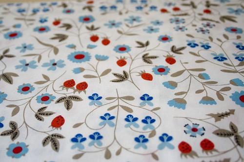 fabric : red & aqua